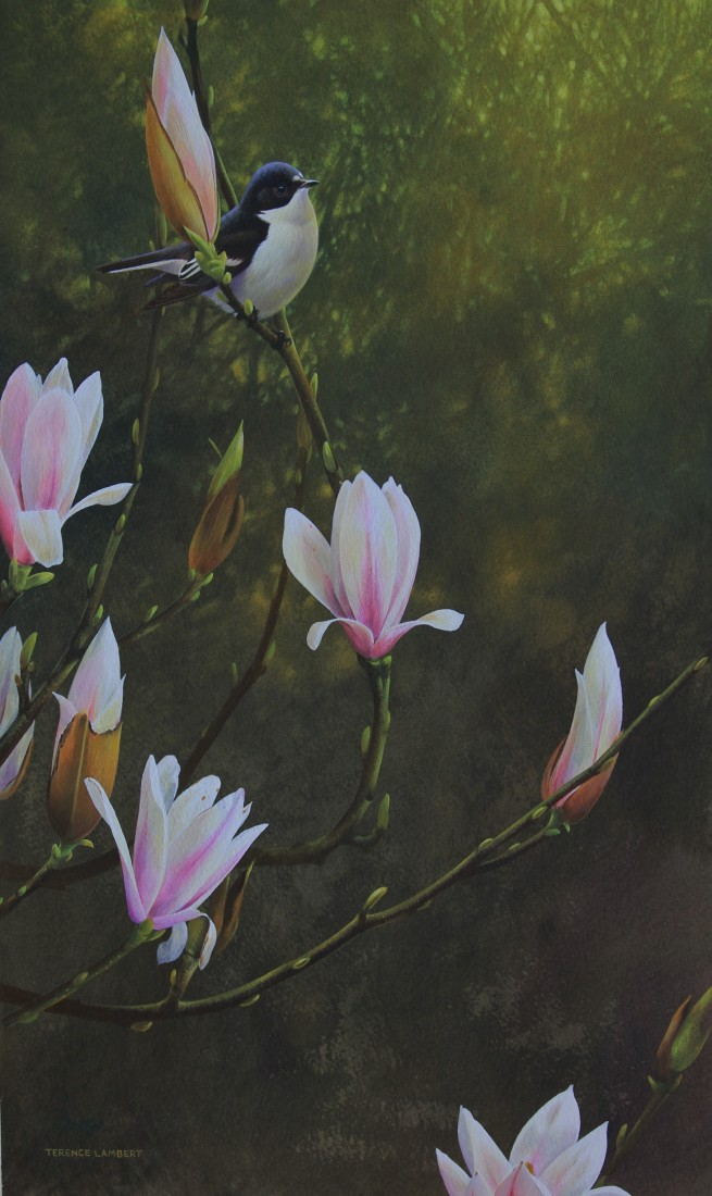 Spring gems Image