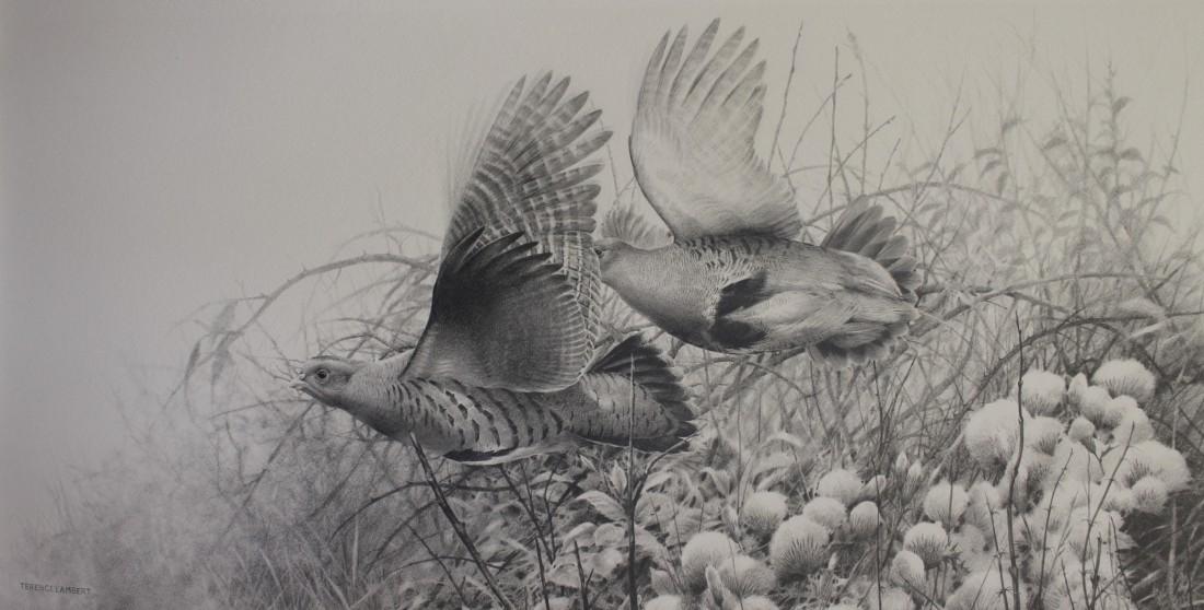 Partridge Image