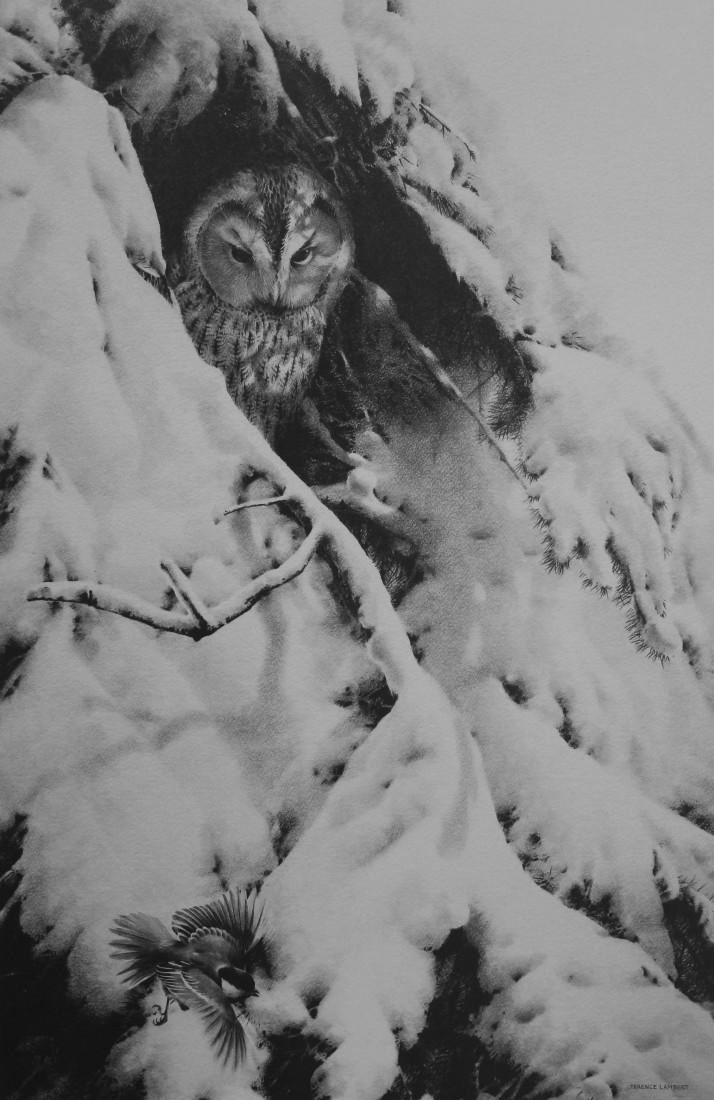 Winters Tale Image